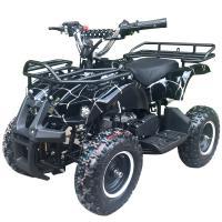 Квадроцикл ATV-049 (Classic 049сс 2Т) (электростартер)