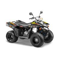 STELS ATV 110А HUGO